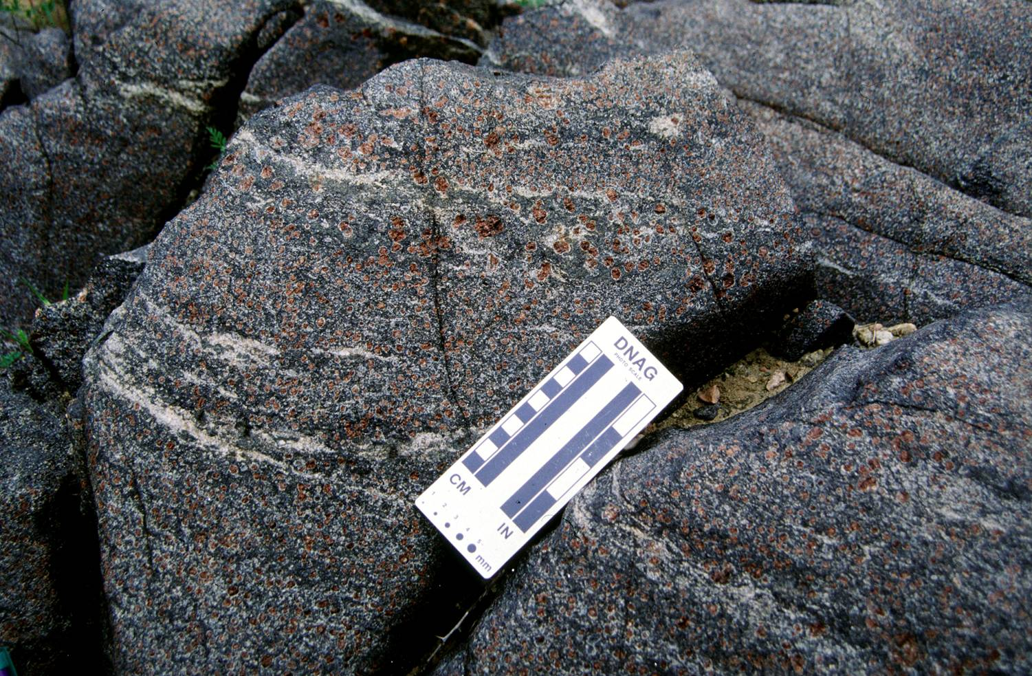 granite and gneiss relationship trust